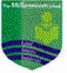 The Millennium School Indore - logo
